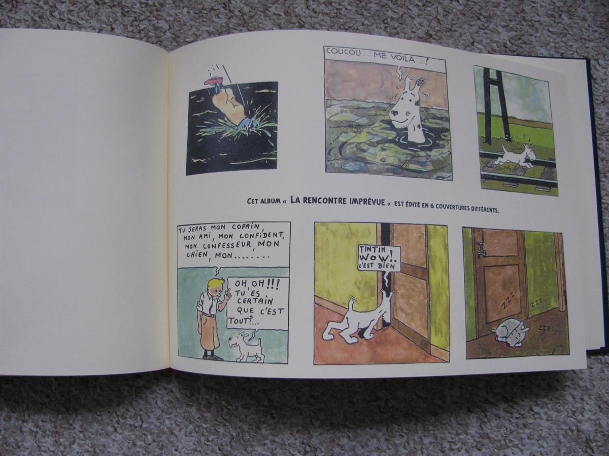 Tintin - Pastiches, parodies & pirates